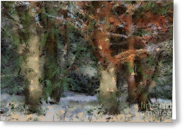 Trees In The Wintery Forest Greeting Card