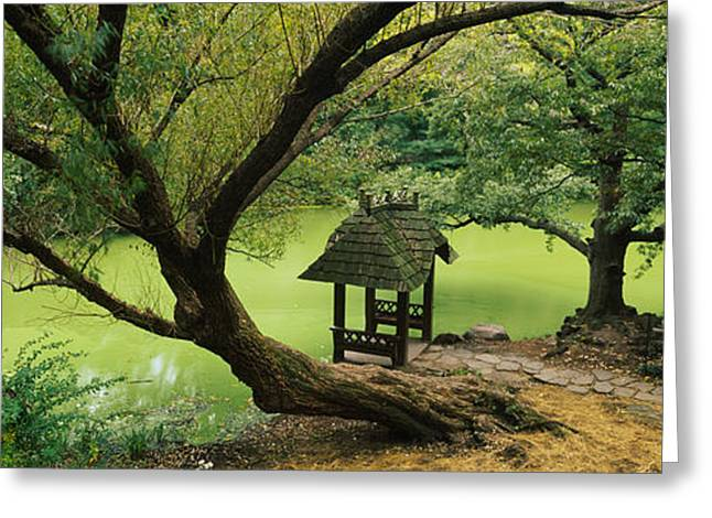 Trees Near A Pond, Central Park Greeting Card by Panoramic Images
