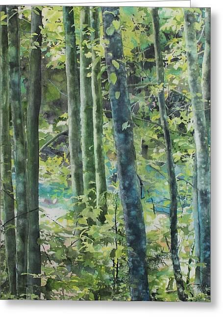 Trees Of Riverbank Greeting Card