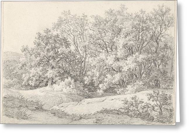 Trees On A Dune Ridge At The Hartekamp, Heemstede Greeting Card by Quint Lox