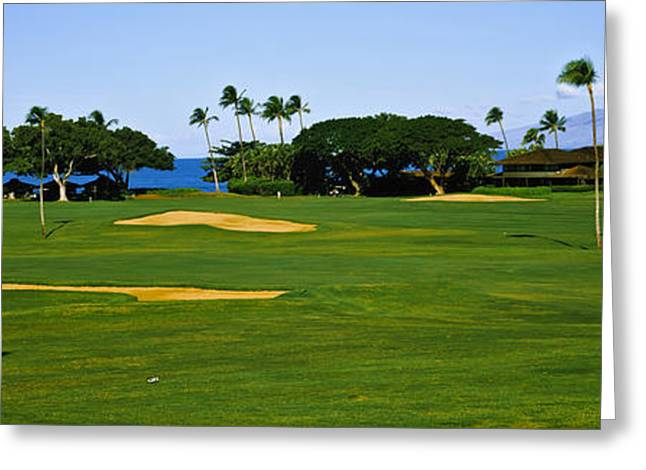 Trees On A Golf Course,kaanapali Golf Greeting Card by Panoramic Images