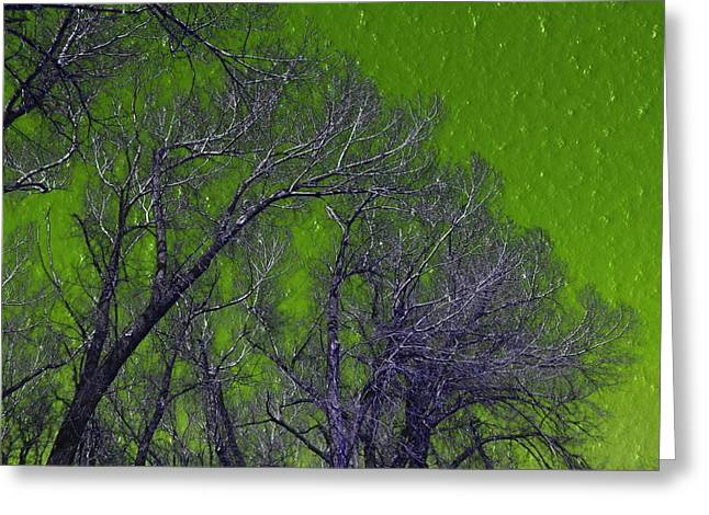 Trees On Green Sky Greeting Card