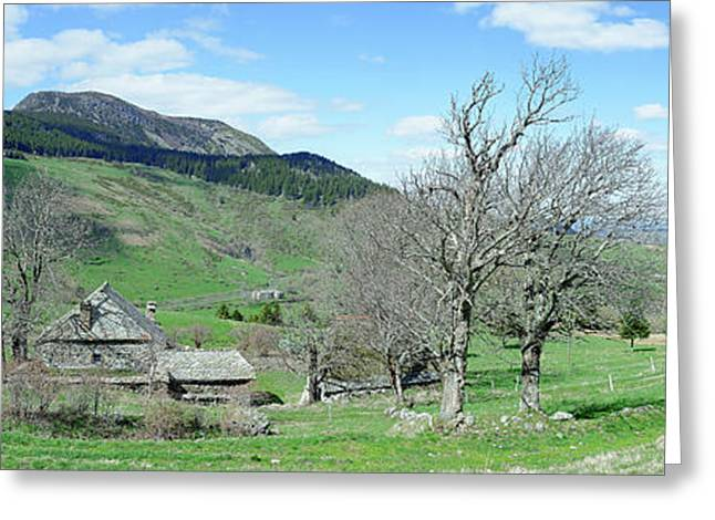 Trees On Hill With Mountain Range Greeting Card by Panoramic Images