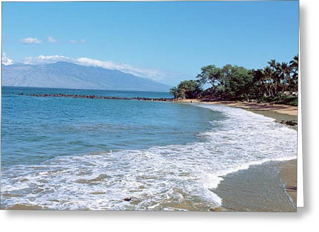 Trees On The Beach, Molokai, Maui Greeting Card by Panoramic Images
