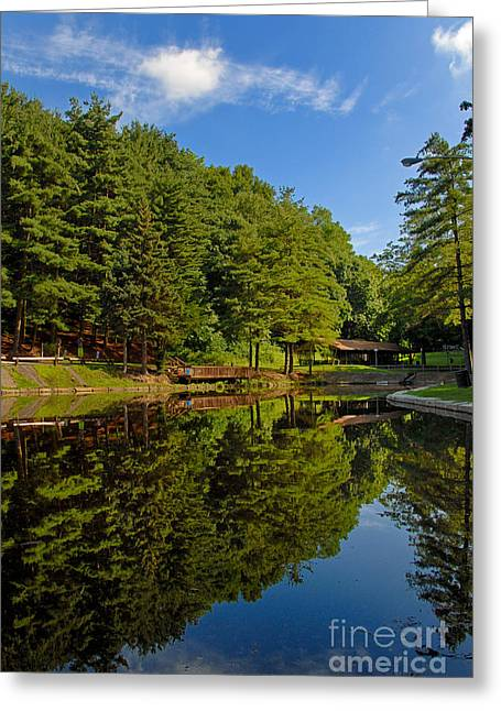 Trees Reflected On Mirrored Lake  Greeting Card