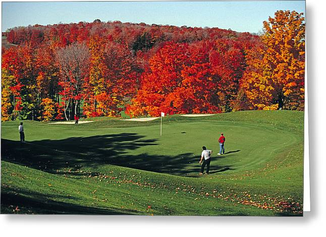 Treetops Golf Greeting Card