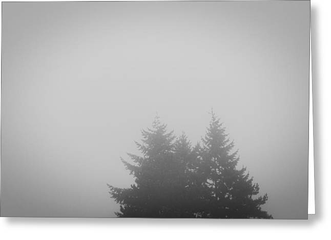 Treetops In Fog Greeting Card