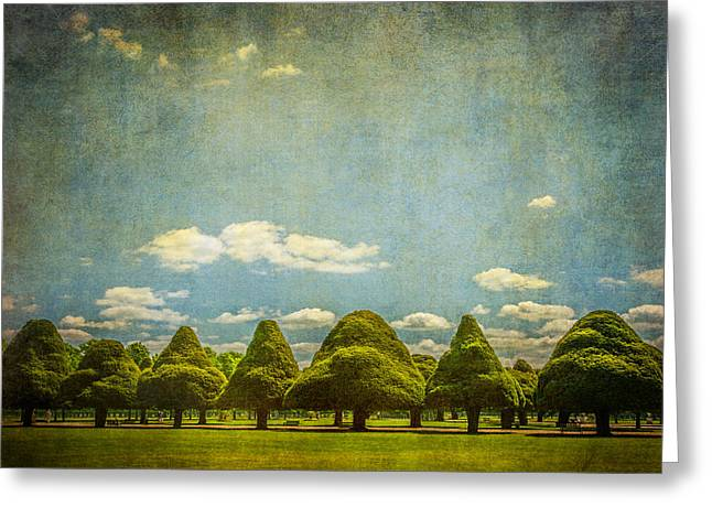 Triangular Trees 003 Greeting Card by Lenny Carter