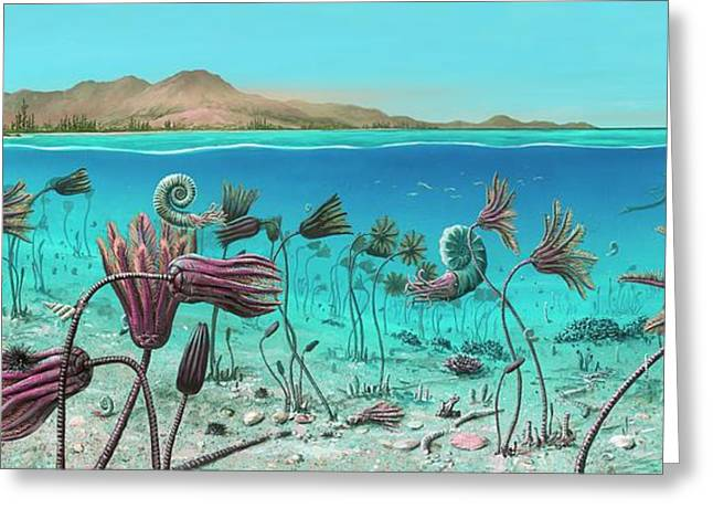 Triassic Land And Marine Life Greeting Card by Richard Bizley