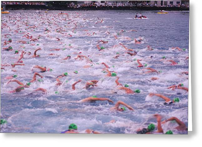 Triathlon Athletes Swimming In Water Greeting Card by Panoramic Images
