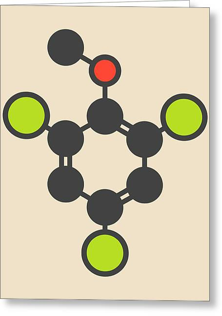Trichloroanisole Cork Taint Molecule Greeting Card by Molekuul