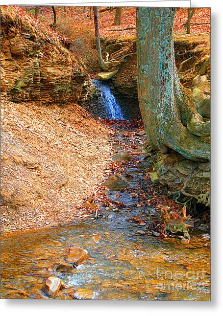 Trickling Waterfall By Shellhammer Greeting Card