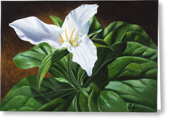 Trillium - Oil Painting On Canvas Greeting Card