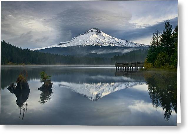 Trillium Reflections Greeting Card by David  Forster