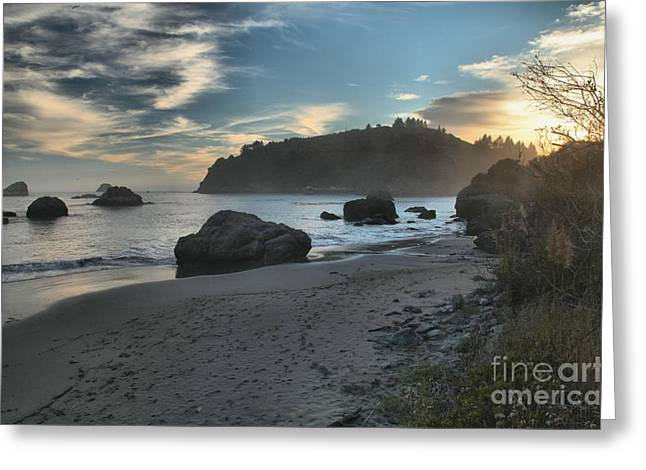 Trinidad Rock Garden Greeting Card by Adam Jewell