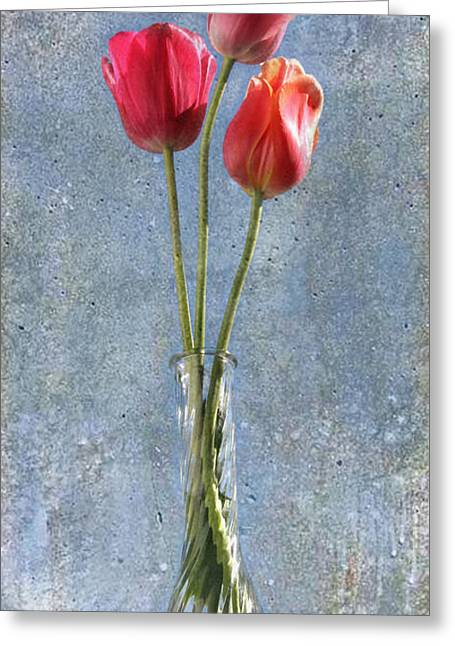 Greeting Card featuring the photograph Trio by Terri Harper