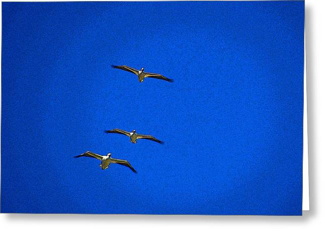 Greeting Card featuring the photograph Trio by Tom DiFrancesca