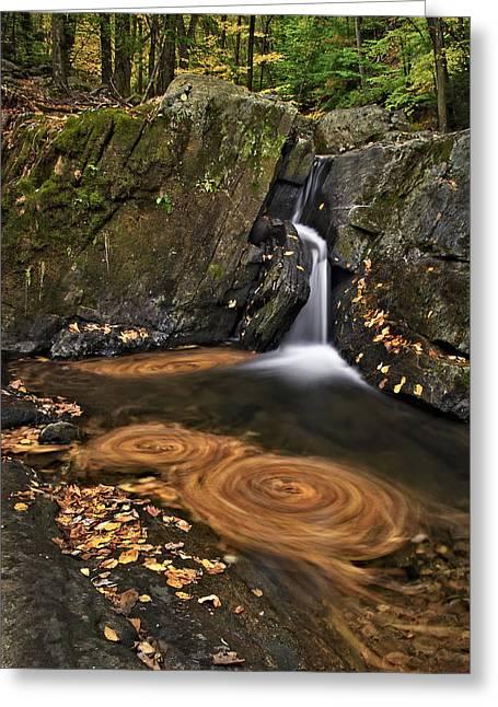 Triple Swirls Greeting Card by Susan Candelario