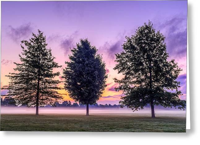 Triplets In Morning Fog Greeting Card
