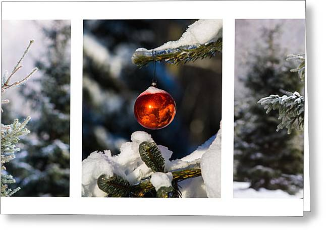 Triptych - Christmas Forest - Featured 3 Greeting Card by Alexander Senin