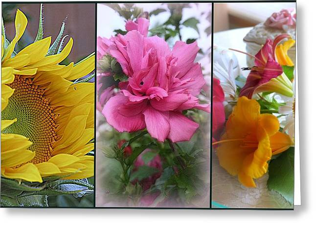 Triptych Of Summer Florals Greeting Card by Kay Novy