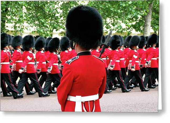 Trooping Of The Colour, London, England Greeting Card by Alex Bartel