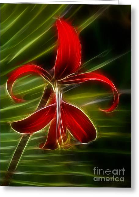 Tropical Abstract Greeting Card by Vivian Christopher