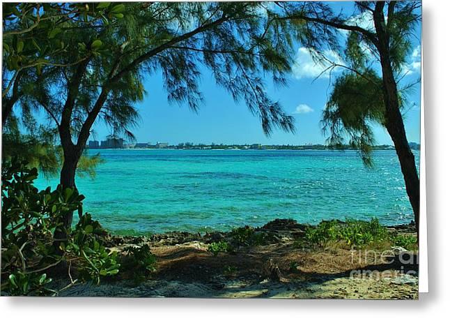Tropical Aqua Blue Waters  Greeting Card