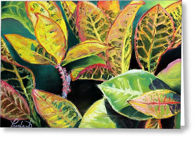 Tropical Colorful Croton Leaves Greeting Card by Prashant Shah