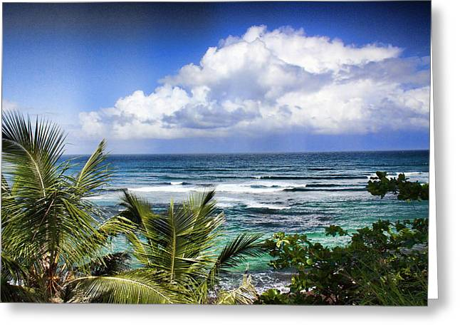Tropical Dreams Greeting Card