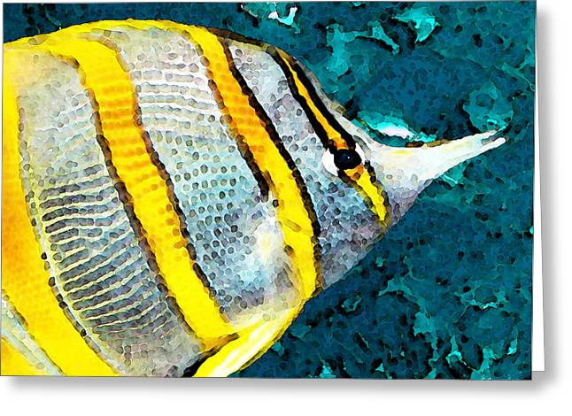 Tropical Fish - Copperband - Beach Art Greeting Card by Sharon Cummings