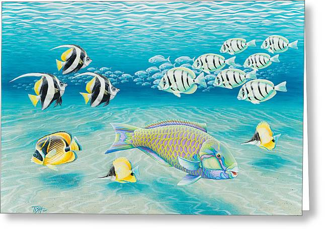 Tropical Fish Greeting Card