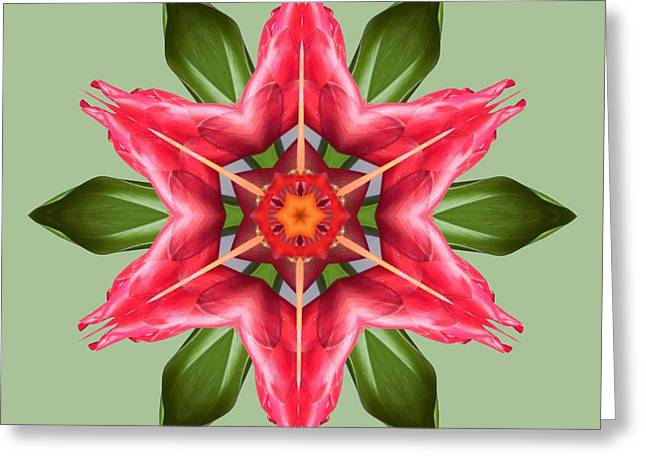 Tropical Flower Mandala Greeting Card