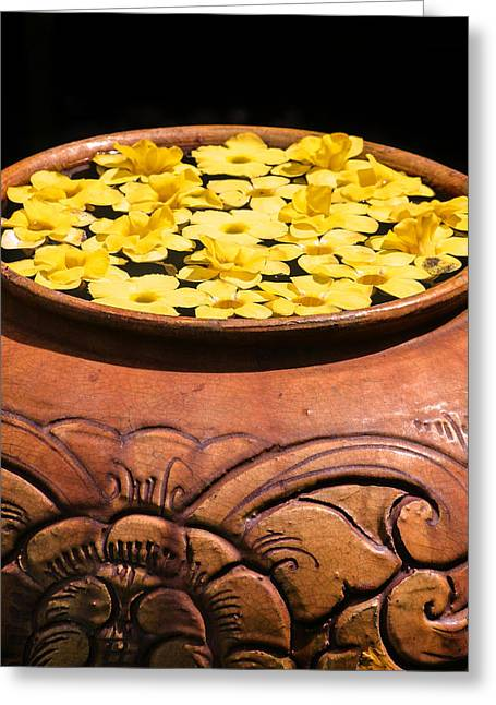 Greeting Card featuring the photograph Tropical Flower Pot by Rob Tullis