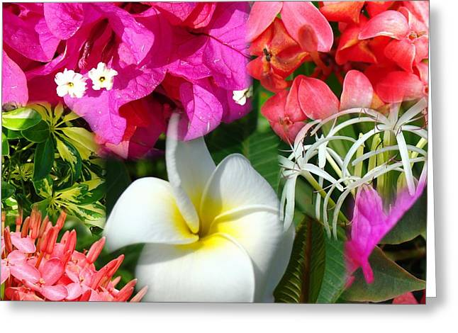 Tropical Flower Power 2 Greeting Card