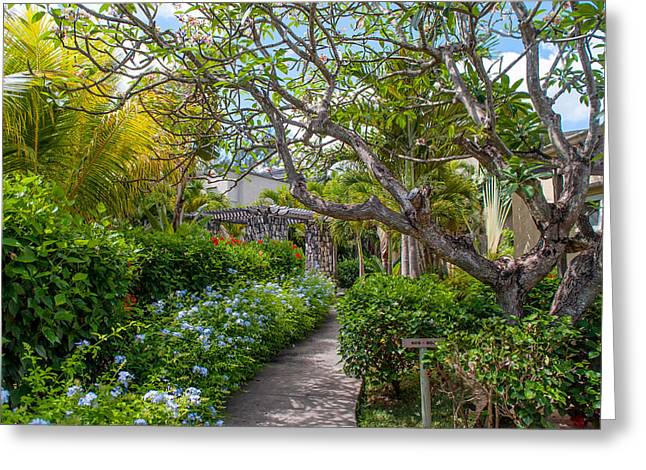 Tropical Garden. Mauritius Greeting Card by Jenny Rainbow