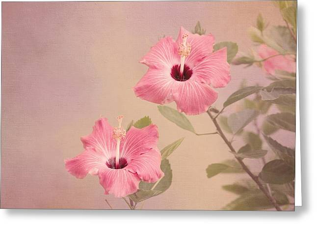 Tropical Hibiscus Greeting Card by Kim Hojnacki