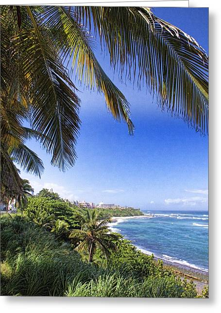 Greeting Card featuring the photograph Tropical Holiday by Daniel Sheldon