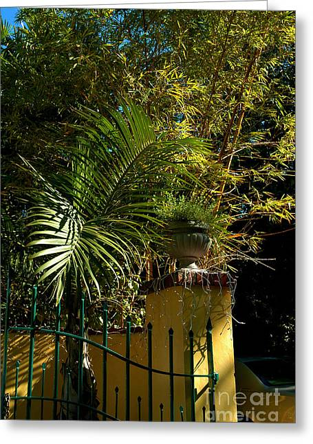 Tropical Invitation Greeting Card