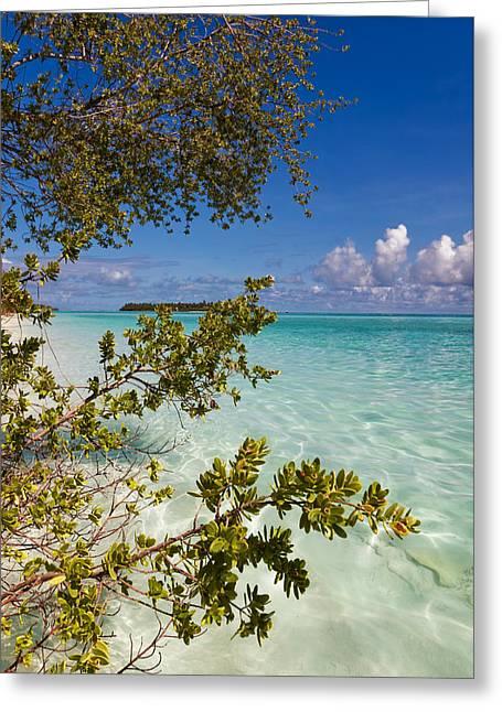 Tropical Island Greeting Card by Jenny Rainbow