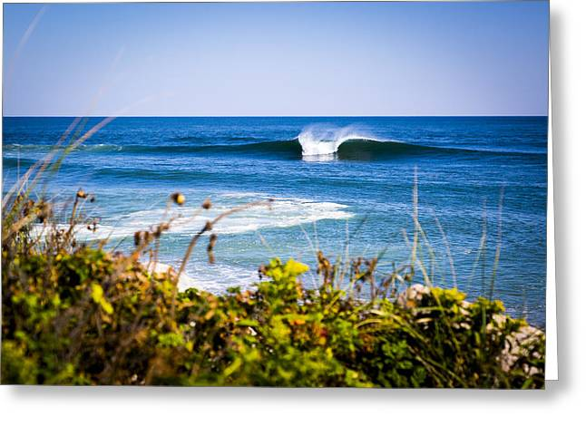 Tropical Montauk Greeting Card
