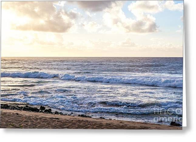 Greeting Card featuring the photograph Tropical Morning  by Roselynne Broussard
