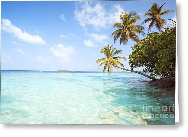 Tropical Sea In The Maldives - Indian Ocean Greeting Card