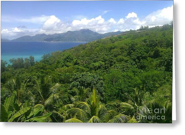 Tropical Seychelles Greeting Card by Ted Williams