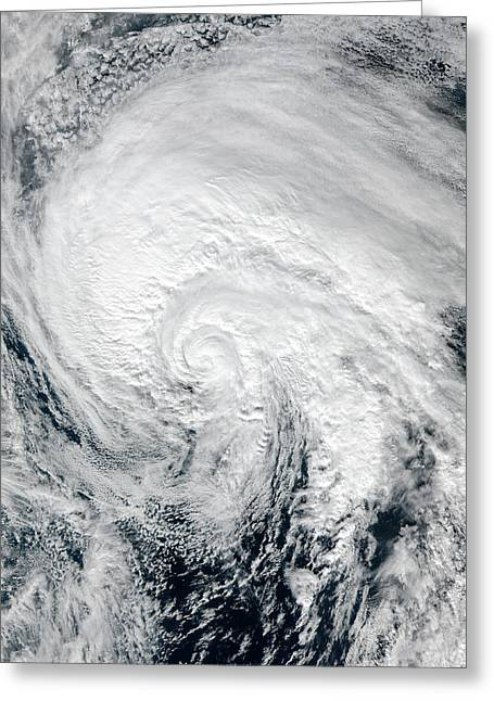 Tropical Storm Alex Greeting Card by Nasa