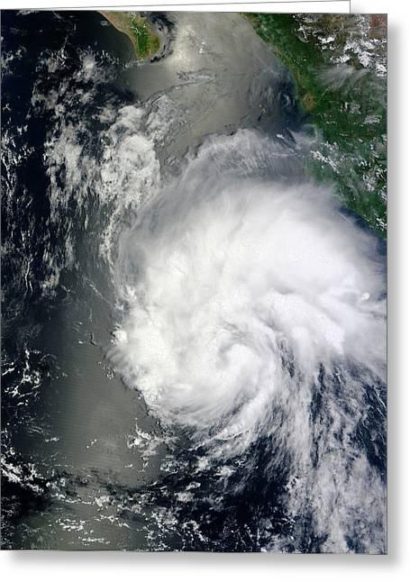 Tropical Storm Hernan Greeting Card by Nasa Goddard Modis Rapid Response Team
