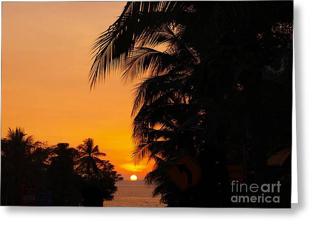 Tropical Sunset Greeting Card by Alina Satir