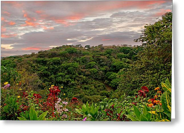Greeting Card featuring the photograph Tropical Sunset Landscape by Peggy Collins