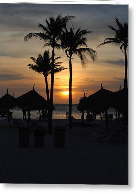 Tropical Sunset Greeting Card by Linda  Barone