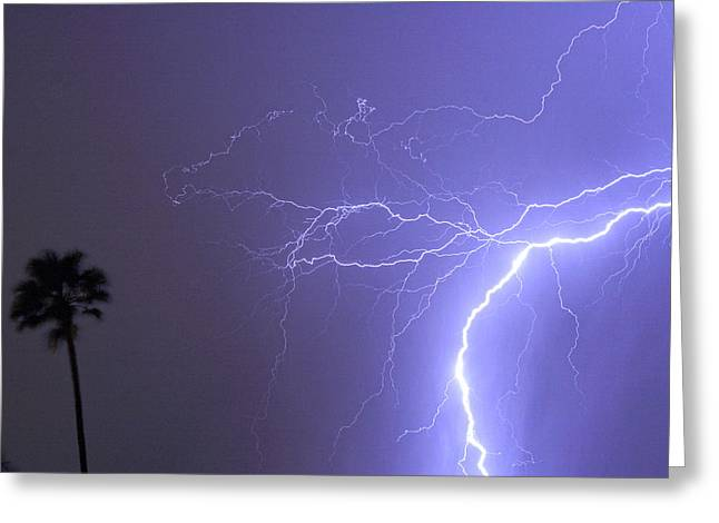 Tropical Thunderstorm Night  Greeting Card by James BO  Insogna